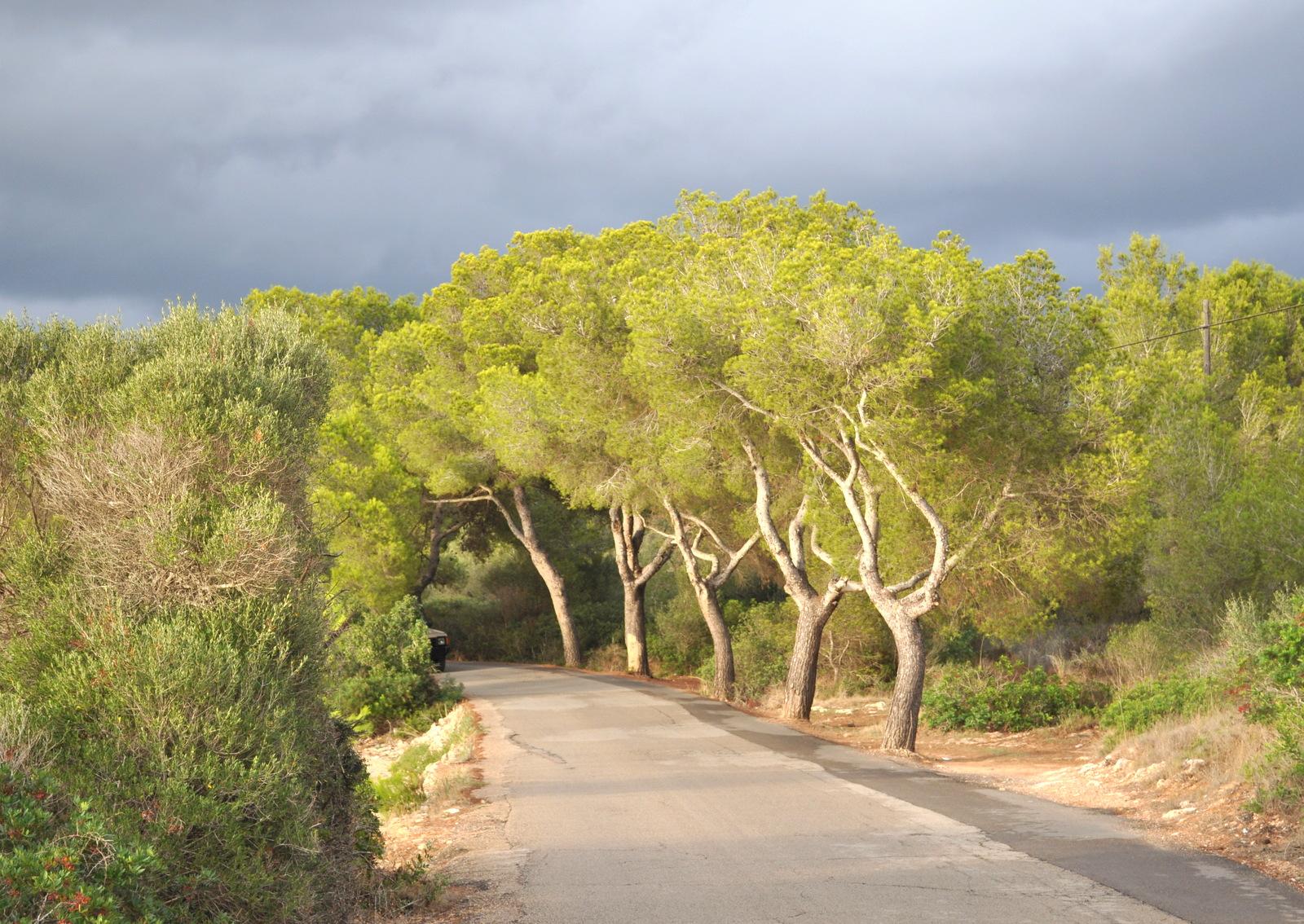 Mallorca 700